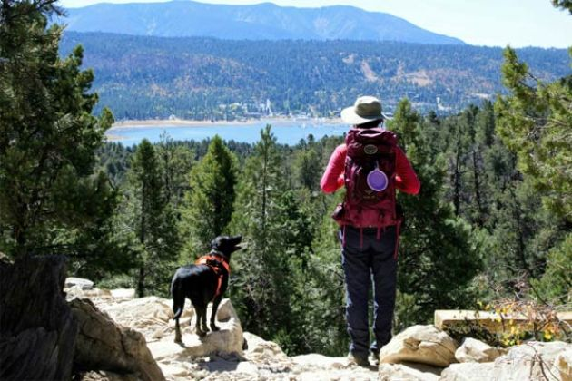 Big Bear Hiking